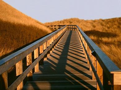 Life coaching a tudatosabb életvezetésért