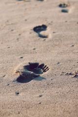 Vezetői lábnyomok